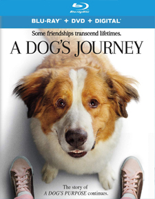 Dog's Journey, A (Blu-ray Review)