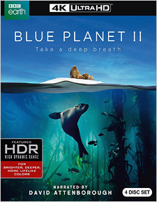 Blue Planet II (4K UHD Review)
