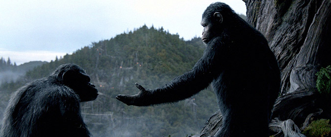 Duelity: Caesar and Koba from Dawn of the Planet of the Apes