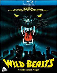 Wild Beasts (aka Belve Feroci)